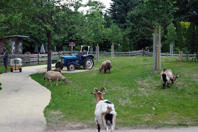 Mit Kindern im Ferienpark in der Heide