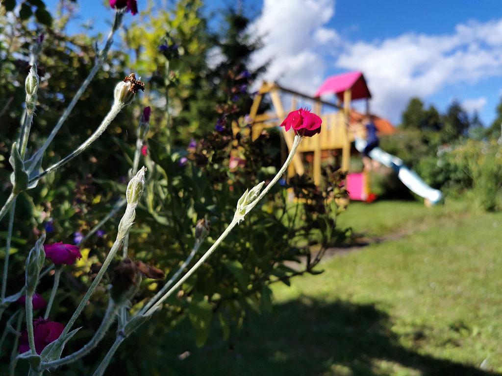 Klettergerüst im Garten